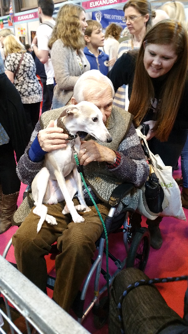 Crufts 2017 Discover Dogs image 3
