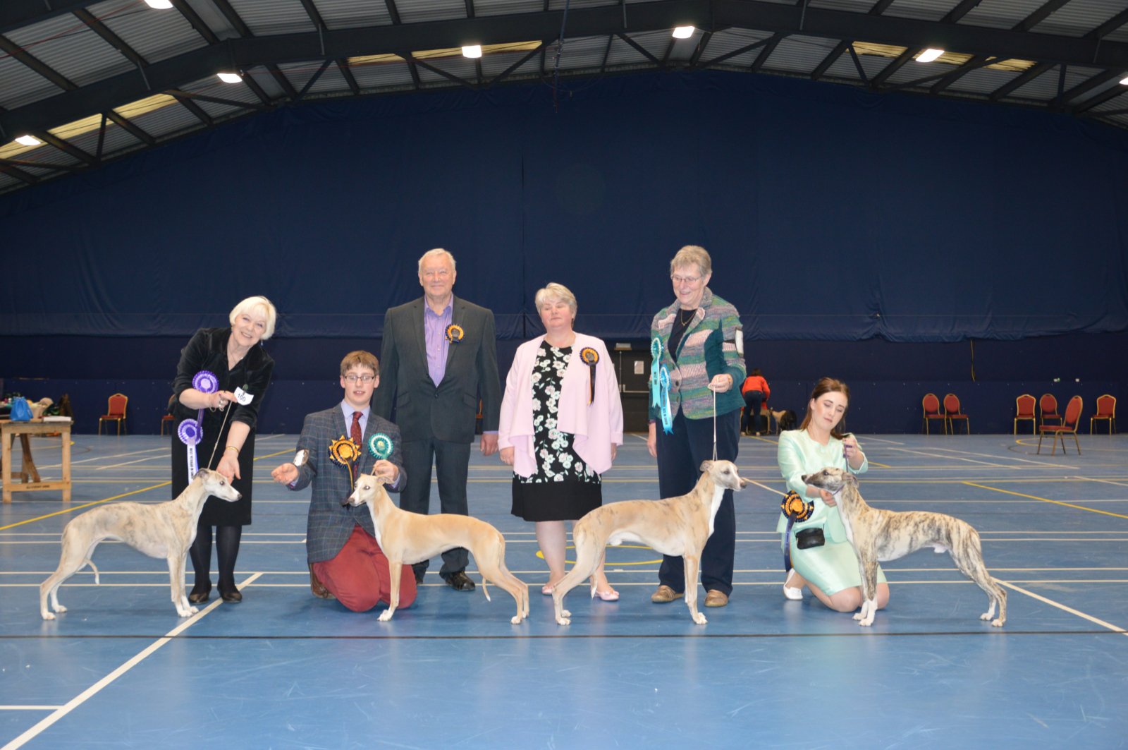 Dog Critique - Championship Show line-up - Whippet Club